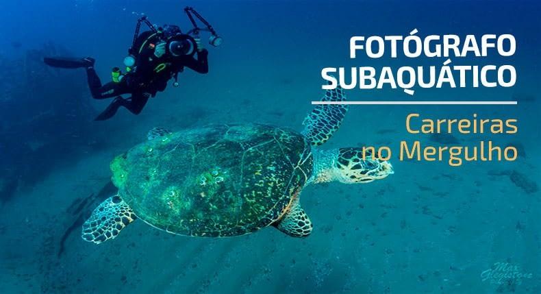 Carreiras no mergulho: fotógrafo subaquático