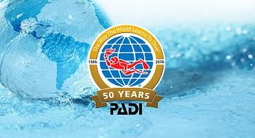 O que significa PADI?