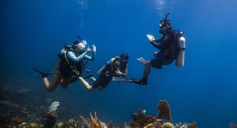 Será que tem emprego para quem quer trabalhar com mergulho?
