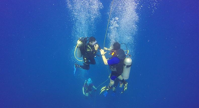 5 Mandamentos na vida de um instrutor de mergulho