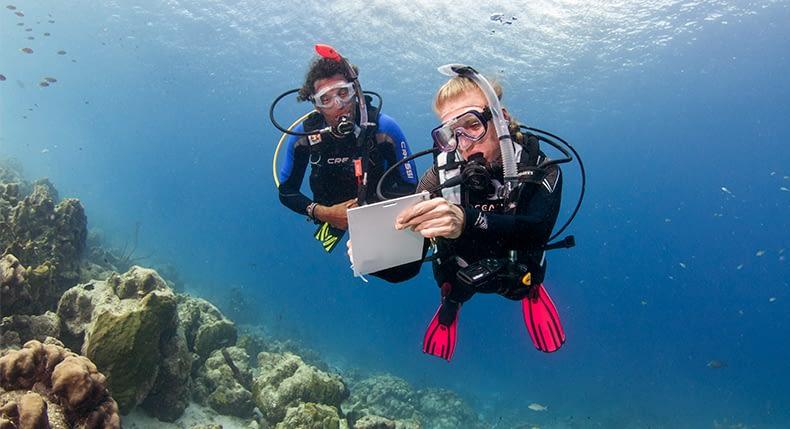 Salário de Instrutor de Mergulho no Brasil
