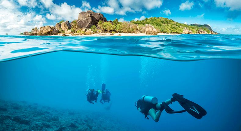 5 meios para um fotógrafo ganhar dinheiro com mergulho
