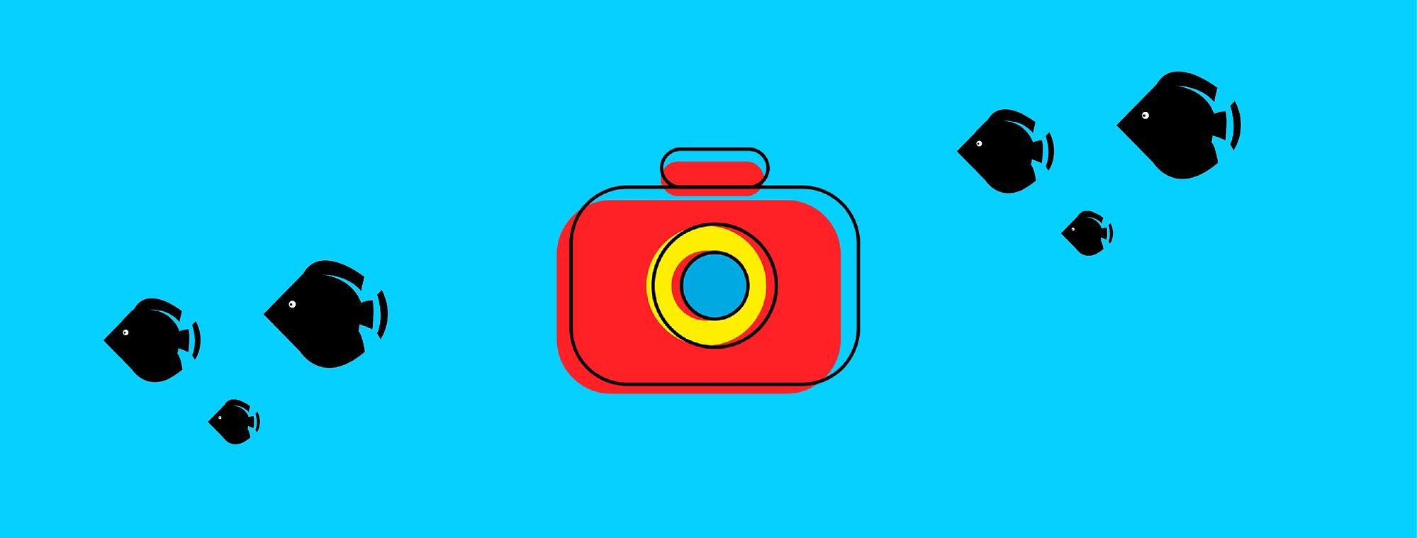 Instrutor de Fotografia Subaquática