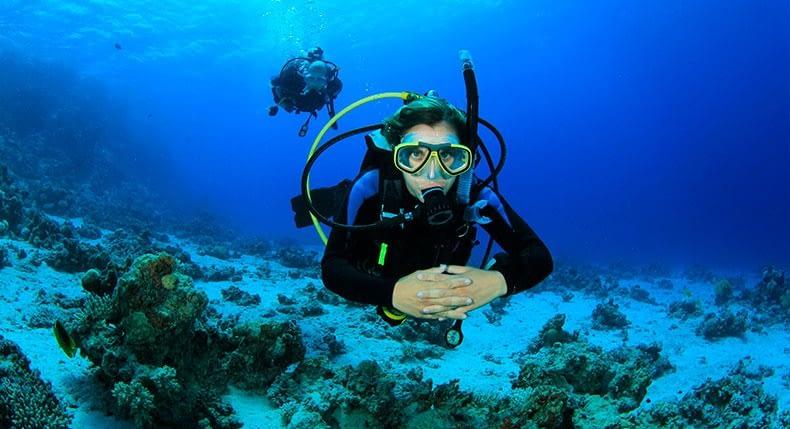 Como tirar um ano sabático trabalhando com mergulho?