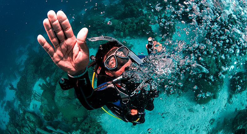 Por que um excelente profissional de mergulho deve aprender a vender?