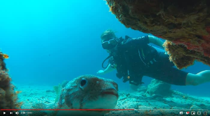 Mergulho no Caribe